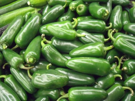Jalapeno Early chili paprika mag /15 szem