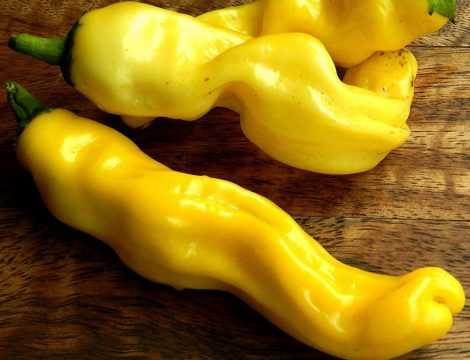 Peter's Pepper Yellow chili paprika mag /10 szem